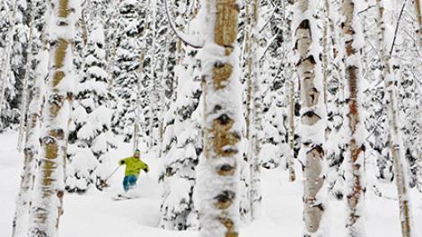 Ski Utah: Winter Sports Heaven
