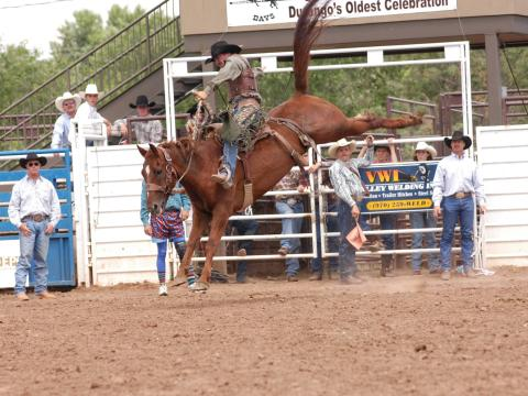 Rodeo excitement during the Durango Fiesta Days celebration
